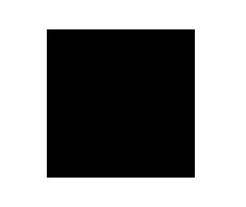 logo-north-sails-casa-della-scarpa